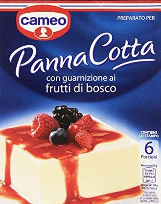 Picture of PREP.PANNA COTTA FRUTTI DI BOSCO CAMEO GR.107