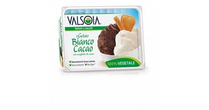Picture of GELATO BIANCO E CACAOGR 500 VK VALSOIA