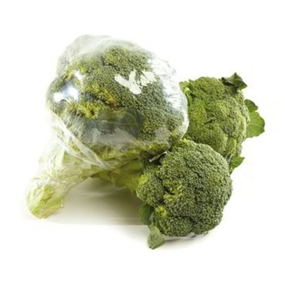 Picture of BROCCOLETTI GR.500