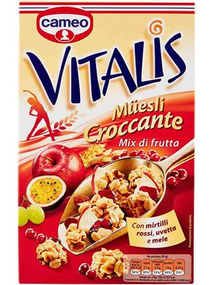 Picture of MUESLI VITALIS MIX DI FRUTTA CAMEO GR300